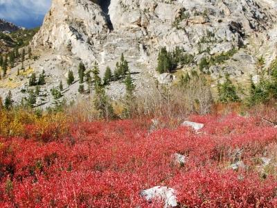 2008 Grand Tetons National Park