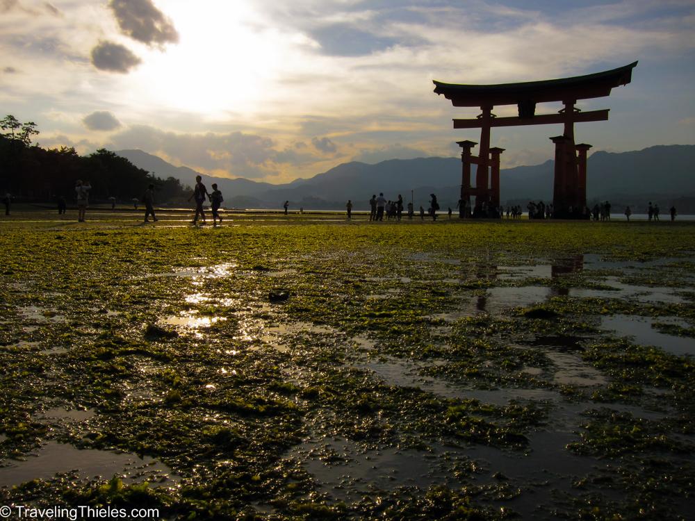 2011-hiroshima-miyajima-9
